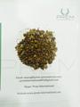 Algodão farinha de semente