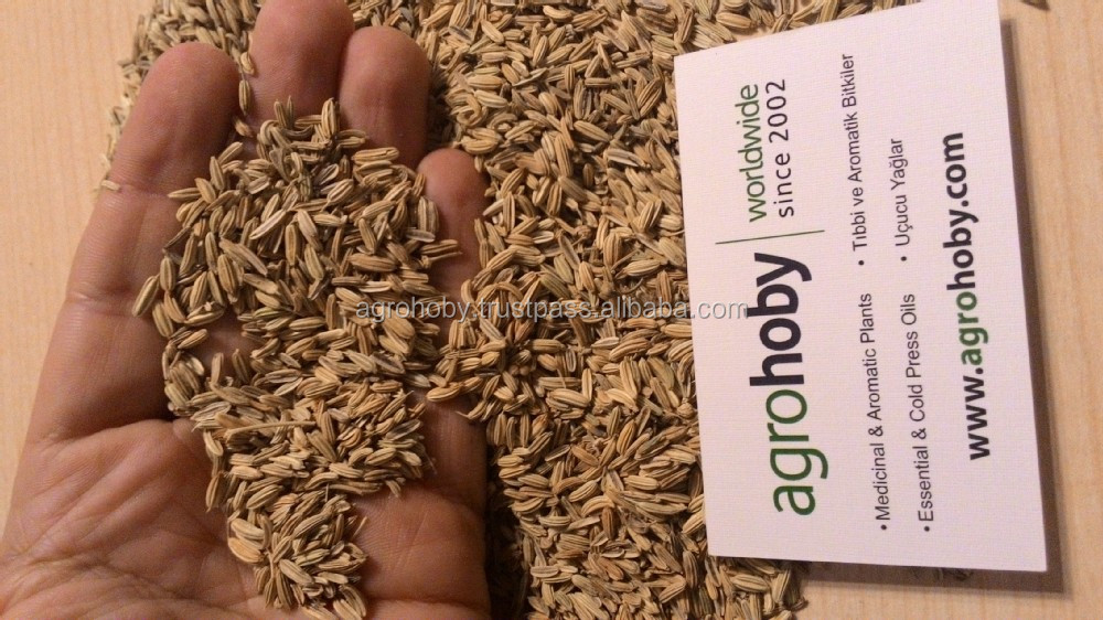 Fennel Seeds in Arabic Fennel Seed Price Cumin