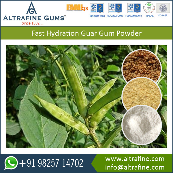 Best Standard Industrial Extraction of Guar Gum Powder (guaran)