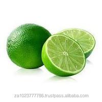 FRESHLY Green Lime/Fresh Lime/ Bulk Lime FOR SALE