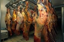 Meats(Beef,Lambs,Horsemeats,Goats)