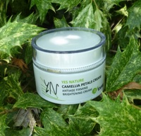 Olive Oil Camellia Petals Beauty Product Face Cream for Dry Skin and Brightness