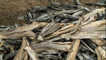 Dried Stock Fish and stockfish heads For Sale