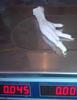 Frozen Chicken feet BEST PRICE / Processed Frozen Chicken Feet/Paws