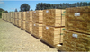 Sequal Lumber pine timber for export PFCOL ACOL
