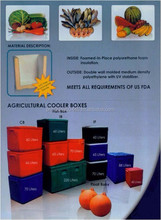 ice flower, cooler box, ice chest, fresh meat box, agricultural cooler box, advertising cooler box, beverage cooler boxes
