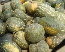 Good Quality Fresh Pumpkin from Bangladesh