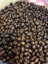 Roasted Robusta Coffee Beans from Vietnam
