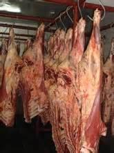 FQ Halal Buffalo Meat/FROZEN HALAL BEEF / BUFFALO BONELESS MEAT OFFALS (FQ CUTS / HQ CUTS / COMPENSATED 60/40)