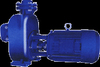 /product-tp/self-priming-centrifugal-automatic-water-pressure-pump-50017572064.html