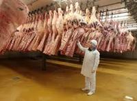 Quality Halal Frozen Beef Meat/Liver/Veal for sale