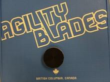 Agility Blades Synthetic Ice Pucks