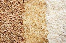 Brazil Long Grain White Rice - Types 1 - 2 - 3 - 4