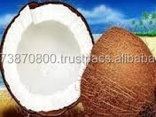 Indian Coconut Exporters to mauritius