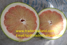 Thai quality Pomelo Fruit from Thailand Farm
