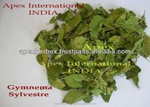 Gymnema Leaves / Gurmar / Gymnema Sylvestre T Cut