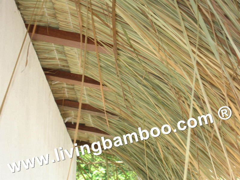 Thatch Roof Natural Material For Bamboo House