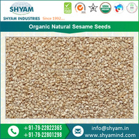 2015 Hot Sale New Crop Raw Sesame Seeds to Extract Oil