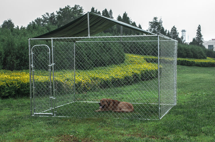 10x10x6ft outdoor cheap chain link large dog kennels