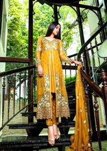 Pakistani Pure Chiffon Dresses