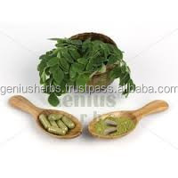 Premium Grade Moringa Oleifera Leaf Capsules (420 mg) for Bulk Export
