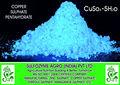 productos químicos de sulfato de cobre pentahidratado precio