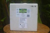 Bulk Tamanu Oil - Certified Organic