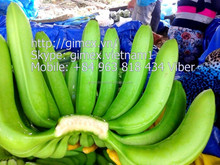 Fresh Green Cavendish banana BIG SIZE