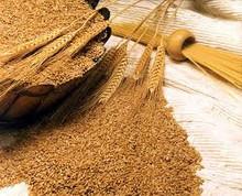 piensos de trigo