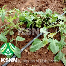 Top One Brand Agriculture Thin Walled Drip Lateral/drip irrigation