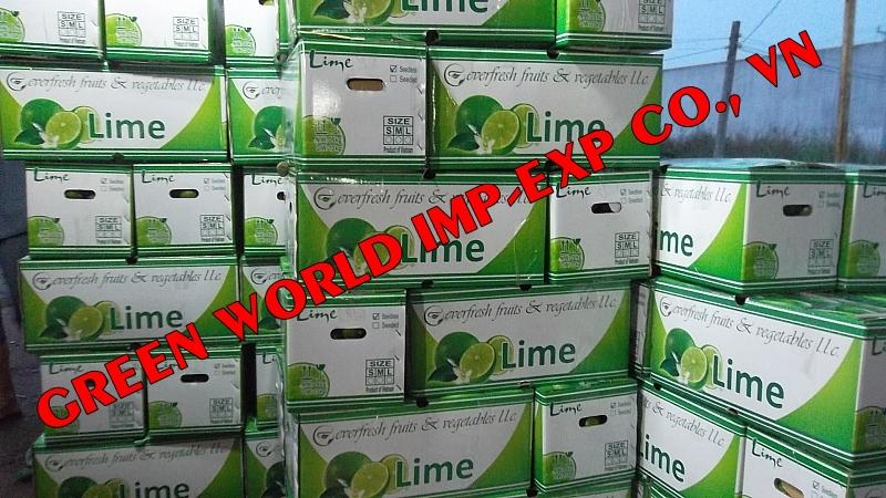FRESH LIME ( GREEN LEMON) IN VIETNAM WITH HIGHEST QUALITY