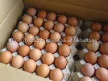 Fresh table chicken egg white and brown size 40g-50g-60g-65g-70g
