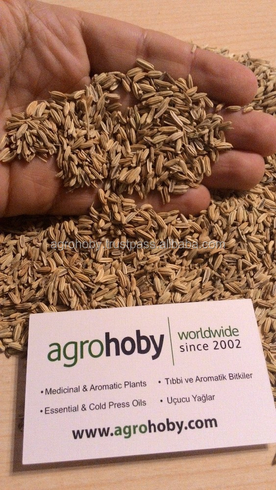Fennel Seeds in Arabic Fennel Seed in Arabic