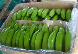 Fresh Banana and other tropical fruits