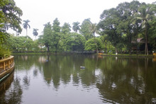 Naturally Occurring Bacteria for Healthy and Clear Ponds