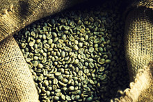 Vietnam Robusta special green coffee beans