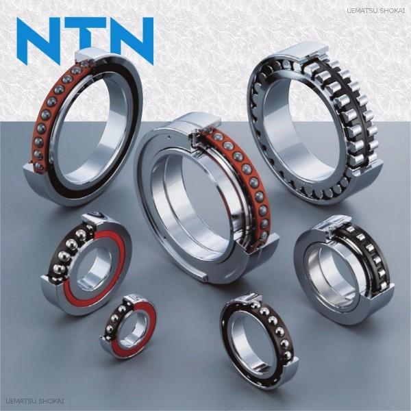 NTN02