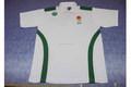 personalizado impresión polos polos 50/50 100 % algodón pq polos polos poyester rendimiento deportivo