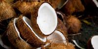 semi husked matured coconuts supplier