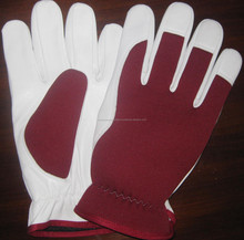 Drivers, Fitters, Goat Skin Leather Gloves 100% Cotton Back Multi purpose