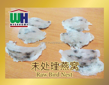 RAW BIRD NEST