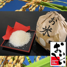 High quality and Reliable paddy rice price Akita Komachi made in Japan