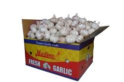 Medine Garlic