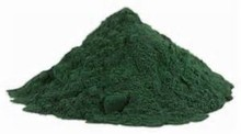 Organic Certified Spirulina Powder in bulk supply