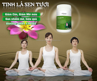100 % natural lotus leaf extract good price plant extract powder cure blood pressure