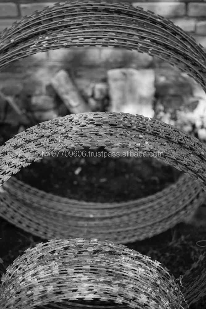 Concertina type razor barbed wire buy