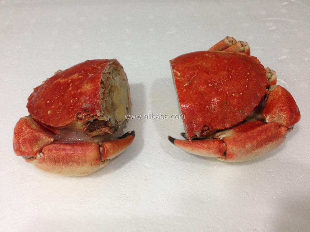 Stone Crab Saw.JPG