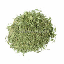 100% High Quality of Dried Organic Stevia Leaves From Thailand