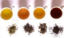 Ceylon Tea in Bulk, Packets, Tea Bags, Herbal tea, Green Tea, etc