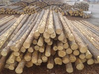 WOODEN POLES FOR USE OF OVERHEAD AND TELECOMMUNICATION LINES